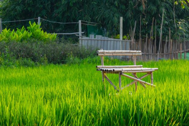 bambus bænk